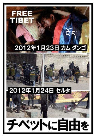 チベットに自由を 1月23、24日ダンゴとセルタの弾圧の写真
